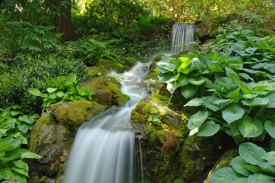 Waterfall At Minter Gardens